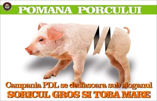 20111220-182540.jpg