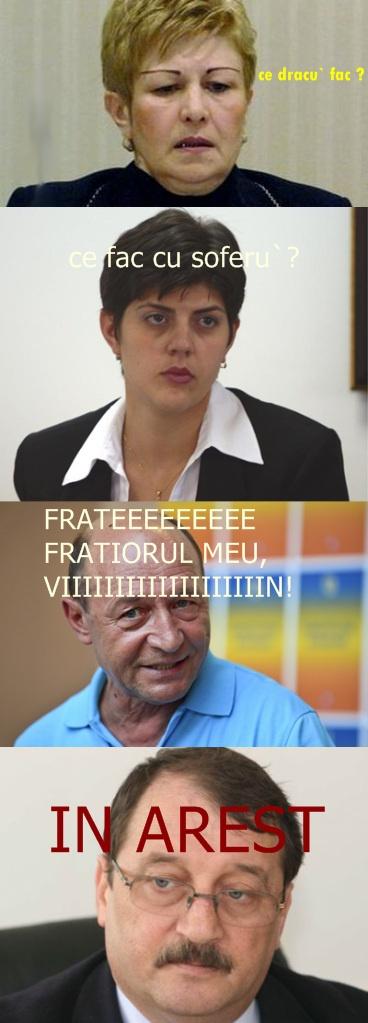 livia_stanciu-vert